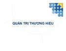 Bài giảng Quản trị thương hiệu -  Đào Hoài Nam, MBA