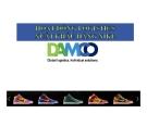 Thuyết trình: Hoạt động logistics xuất khẩu hàng Nike