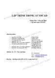 Giáo trình Lập trình trong Autocad - GV. Trần Anh Bình