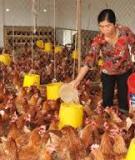 Giáo trình Kinh tế và hộ trang trại: Phần 1