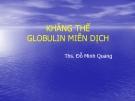 Bài giảng Kháng thể Globulin miễn dịch - ThS. Đỗ Minh Quang