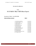 Tiểu luận: Xuất khẩu trực tiếp (direct export)