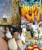 Luận án Tiến sĩ Kinh tế: Các giải pháp kinh tế nhằm thúc đẩy xuất khẩu hàng nông sản của Việt Nam trong quá trình hội nhập kinh tế quốc tế