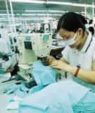 Luận án Tiến sĩ kinh tế: Phân tích lợi nhuận và một số biện pháp nhằm nâng cao lợi nhuận của các doanh nghiệp nhà nước thuộc Ngành Dệt may Việt Nam