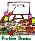 Báo cáo: Tìm hiểu về sự biến đổi của protein của trứng và sữa trong quá trình bảo quản, chế biến