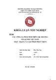 Khóa luận tốt nghiệp: Các công cụ phái sinh trên thị trường ngoại hối Việt Nam: Thực trạng và giải pháp phát triển