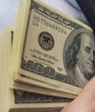 Luận án Tiến sĩ Kinh tế: Quản lý tài chính góp phần nâng cao năng lực cạnh tranh của các tập đoàn kinh tế Việt Nam