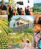 Luận án Tiến sĩ Kinh tế: Marketing xã hội với việc giảm nghèo bền vững ở Việt Nam