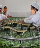 Luận án Tiến sĩ Kinh tế: Phát triển công nghiệp chế biến nông, lâm sản trên địa bàn các tỉnh vùng Bắc Trung Bộ