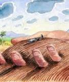 Luận án Tiến sĩ Kinh tế: Hoàn thiện quản lý nhà nước về đất đai của chính quyền quận Tây Hồ