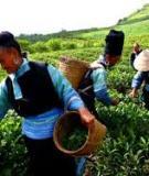 Luận án Tiến sĩ Kinh tế: Hoàn thiện các chính sách xóa đói giảm nghèo chủ yếu ở Việt Nam đến năm 2015