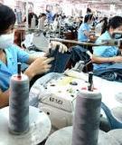 Luận văn Tiến sĩ Kinh tế: Phát triển doanh nghiệp vừa và nhỏ ở Việt Nam trong quá trình hội nhập quốc tế
