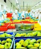 Luận án Tiến sĩ Kinh tế: Phát triển công nghiệp chế biến rau quả ở Việt Nam trong quá trình hội nhập