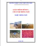 Giáo trình Chuẩn bị trồng ngô: Phần 1 - Trần Văn Dư (chủ biên)