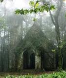 Luận án Tiến sĩ Kinh tế: Chính sách cho thuê môi trường rừng tại các vườn quốc gia ở khu vực phía bắc Việt Nam – nghiên cứu tại Vườn Quốc gia Ba Vì, Tam Đảo, Bến En