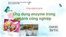 Bài thuyết trình Công nghệ enzym: Ứng dụng enzyme trong ngành công nghiệp