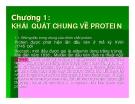 Bài giảng Công nghệ protein - enzym: Chương 1