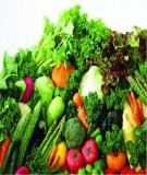 Luận án Tiến sĩ Kinh tế: Tổ chức và quản lý sản xuất, chế biến, tiêu thụ rau ở tỉnh Thái Nguyên trong điều kiện hội nhập