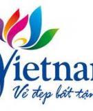 Luận án Tiến sĩ Kinh tế: Khả năng cạnh tranh của các doanh nghiệp lữ hành quốc tế của Việt Nam sau khi Việt Nam gia nhập Tổ chức Thương mại Thế giới (WTO)