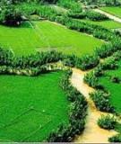 Luận án Tiến sĩ Kinh tế: Chuyển dịch cơ cấu sử dụng đất vùng đồng bằng Sông Hồng trong quá trình công nghiệp hóa - hiện đại hóa nông nghiệp, nông thôn