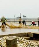 Luận án Tiến sĩ Kinh tế: Sinh kế bền vững vùng ven biển đồng bằng sông Hồng trong bối cảnh biến đổi khí hậu: Nghiên cứu điển hình tại tỉnh Nam Định