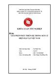 Khóa luận tốt nghiệp: Giải pháp phát triển hệ thống bán lẻ hiện đại tại Việt Nam
