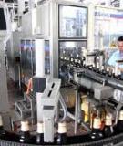 Báo cáo thực tập Công ty Cổ phần Bia và Nước giải khát Việt Hà