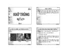 Bài giảng Kỹ thuật xử lý nước thải: Chương 6  - GV. Trần Thị Ngọc Diệu