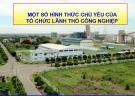 Bài giảng Một số hình thức chủ yếu của tổ chức lãnh thổ công nghiệp - ThS. Hoàng Việt Anh