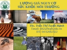 Bài giảng Sức khỏe môi trường: Chương 3 - ThS. Trần Thị Tuyết Hạnh