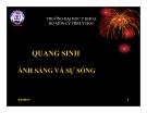 Bài giảng Quang sinh áng sáng và sự sống - ĐHYK Thái Nguyên