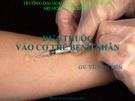 Bài giảng Đưa thuốc vào cơ thể bệnh nhân - GV. Vũ Văn Tiến