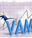 Tiểu luận: Dự án thành lập công ty quản lý tài sản Việt Nam – VAMC