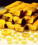 Tiểu luận: Vàng có phải là một kênh đầu tư an toàn hay là công cụ phòng ngừa rủi ro cho đồng đollar Mỹ? các gợi ý cho việc quản trị rủi ro