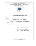 Tiểu luận Quản trị Tài chính: Phân tích tài chính công ty cổ phần cơ điện lạnh REE