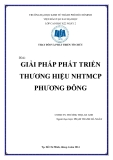 Tiểu luận: Giải pháp phát triển thương hiệu NHTMCP Phương Đông