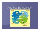 Bài giảng về Hóa học Hemoglobin