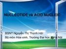 Bài giảng Nucleotide và Acid Nucleic - ĐH Y Hà Nội