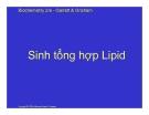 Bài giảng Hóa sinh: Sinh tổng hợp Lipid
