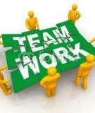 Tiểu luận: Những khó khăn thường gặp trong làm việc nhóm và những giải pháp xây dựng nhóm hiệu quả