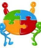 Tiểu luận: Làm việc theo nhóm – khó khăn và giải pháp