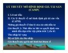 Bài giảng Lý thuyết mô hình định giá tài sản (CAMP)