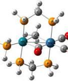 Tiểu luận: Tương tác của protit với kim loại chuyển tiếp