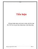 Tiểu luận: Mối quan hệ giữa chính sách tài khóa và chính sách tiền tệ, thực tiễn ở Việt Nam trong giai đoạn khủng hoảng và hậu khủng hoảng