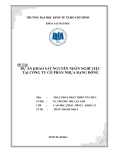 Tiểu luận Thay đổi và phát triển tổ chức: Dự án khảo sát nguyên nhân nghỉ việc tại công ty cổ phần nhựa Rạng Đông