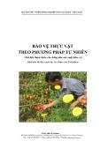 Bảo vệ thực vật theo phương pháp tự nhiên - Dự án phát triển nông nghiệp hữu cơ ADDA - Việt Nam