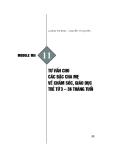 Module Mầm non 11: Tư vấn cho các bậc cha mẹ về chăm sóc, giáo dục trẻ từ 3 đến 36 tháng tuổi - Lương Thị Bình, Nguyễn Thị Quyên