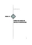 Module Tiểu học 29: Phương pháp nghiên cứu khoa học sư phạm ứng dụng - Nguyễn Ngọc Ân