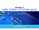 Bài giảng Kinh tế lượng: Chương 3 - Nguyễn Ngọc Lam