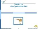 Bài giảng Hệ điều hành nâng cao - Chapter 10: File - System Interface